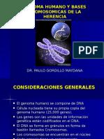 Genoma Humano y Bases Cromosomicas de La Herencia
