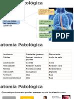 3 CA Gastrico Onco