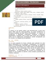 ET_QUINUA (ESP) (2).docx