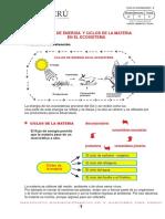 Ciclos Del c,n, Fosforo y Azufre
