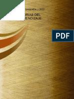 PDF Teorias Del Aprendizaje