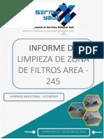Informe Limpieza Zona Filtros