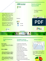Folleto Diagnosticadores-2 (Triptico)