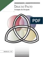Discipulado Maduro e Reprodutivo - Módulo 14.pdf