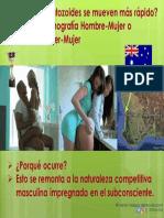 Movimiento de Los Espermatozonides