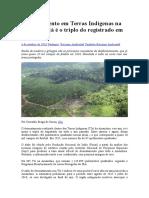 Desmatamento Em Terras Indígenas Na Amazônia Já é o Triplo Do Registrado Em 2015