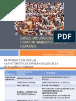 2. Bases Biologicas Del Comportamiento Sexual