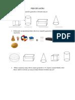 Fisa de Lucru Proiect Cls a II Corpuri Geometrice