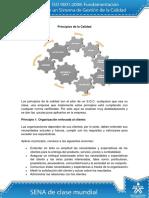 Principios de la Calidad.pdf