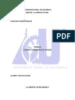 Universidad Rural de Guatemal1