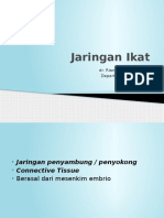 Kuliah Jaringan Ikat 2015