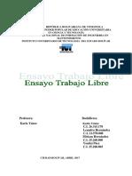 Ensayo (Trabajo Libre)