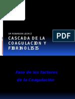Cascada de La Coagulacion y Fibrinolisis (1)