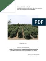Ensayo de producción.pdf