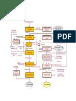 CZinc_Diagrama_Flujo.pdf