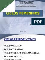 ciclos-femeninos (2).ppt