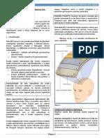 144299212-Amc-Cabeca-Eduardo.pdf