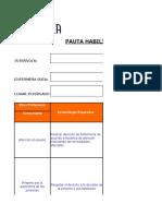 Pauta Habilidades y Destrezas Internado IH y APS 2015