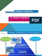 Inteligencia Comercial (1)