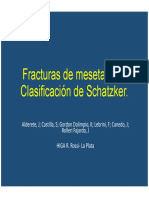 2015 794 PE Musculoesqueletico