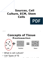 Cell Sources & Cell Culture