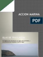 Accion Marina