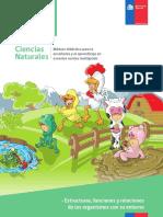 2014EstructurafuncionesyrelacionesGuiadocente-1