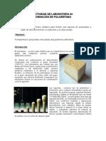 Actividad de Laboratorio 4 Poliuretano (3)
