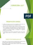 PLANTA-CERVECERA-JLO.pptx