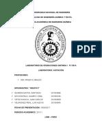 INFORME-AGITACION.docx