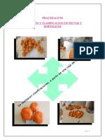 PRACTICA N°04-SELECCION Y CLASIFICACION DE FRUTAS Y HORTALIZAS