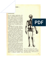 4.Stiinta Despre Oase-Osteologia