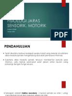 -fisiologi Jaras Sensorik, Motorik