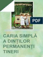 Caria DPT