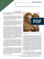 mono.pdf