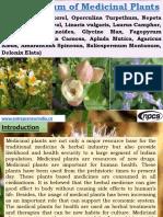 Compendium of Medicinal Plants