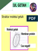 struktur getah