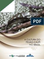 Cultura Fei Ja Oca Up i Brasil