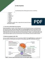 lab11 endocrine glands