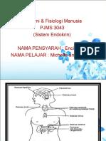 Fisiologi Sistem Endokrin
