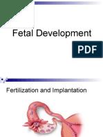 fetaldevelopment powerpoint secondary health