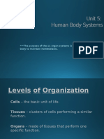 human body systems willis 2014