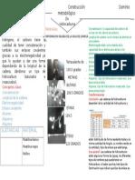 CONTRUCCIONDEMODELOS.docx