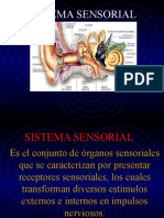 05. Sistemas Sensorial