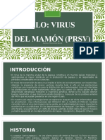 Virus Del Mamon Ppt