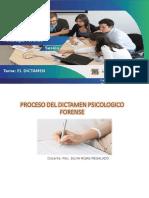 DICTAMEN PSICOLOGICO FORENSE11