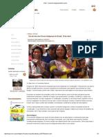 CIMI -Dia de Luta Dos Povos Indígenas