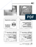 Higado graso-Chile-._PDF.pdf