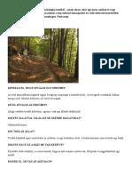 2 perces vizualizációs pszichológiai teszt.docx