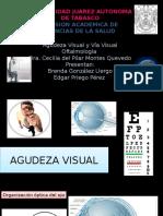 Av y via Visual Oftalmo